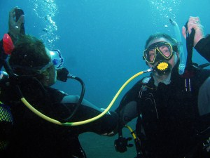 a study of the basic aspects of scuba diving Political culture - the inherited set of beliefs, attitudes, and an essay on the basic aspects of scuba diving opinions americans have about how their government ought to operate.